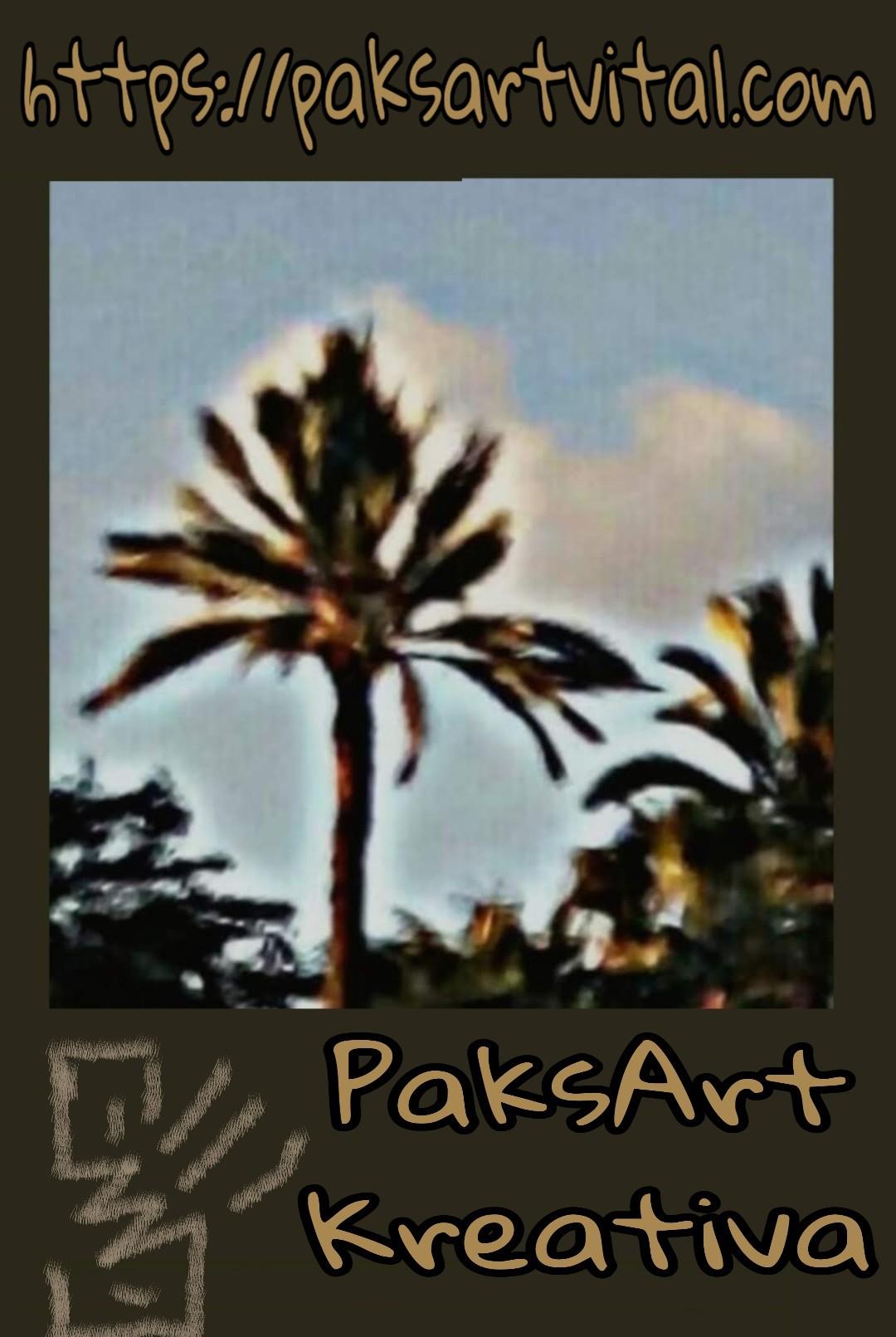 Mundo Kreativo de PaksArt